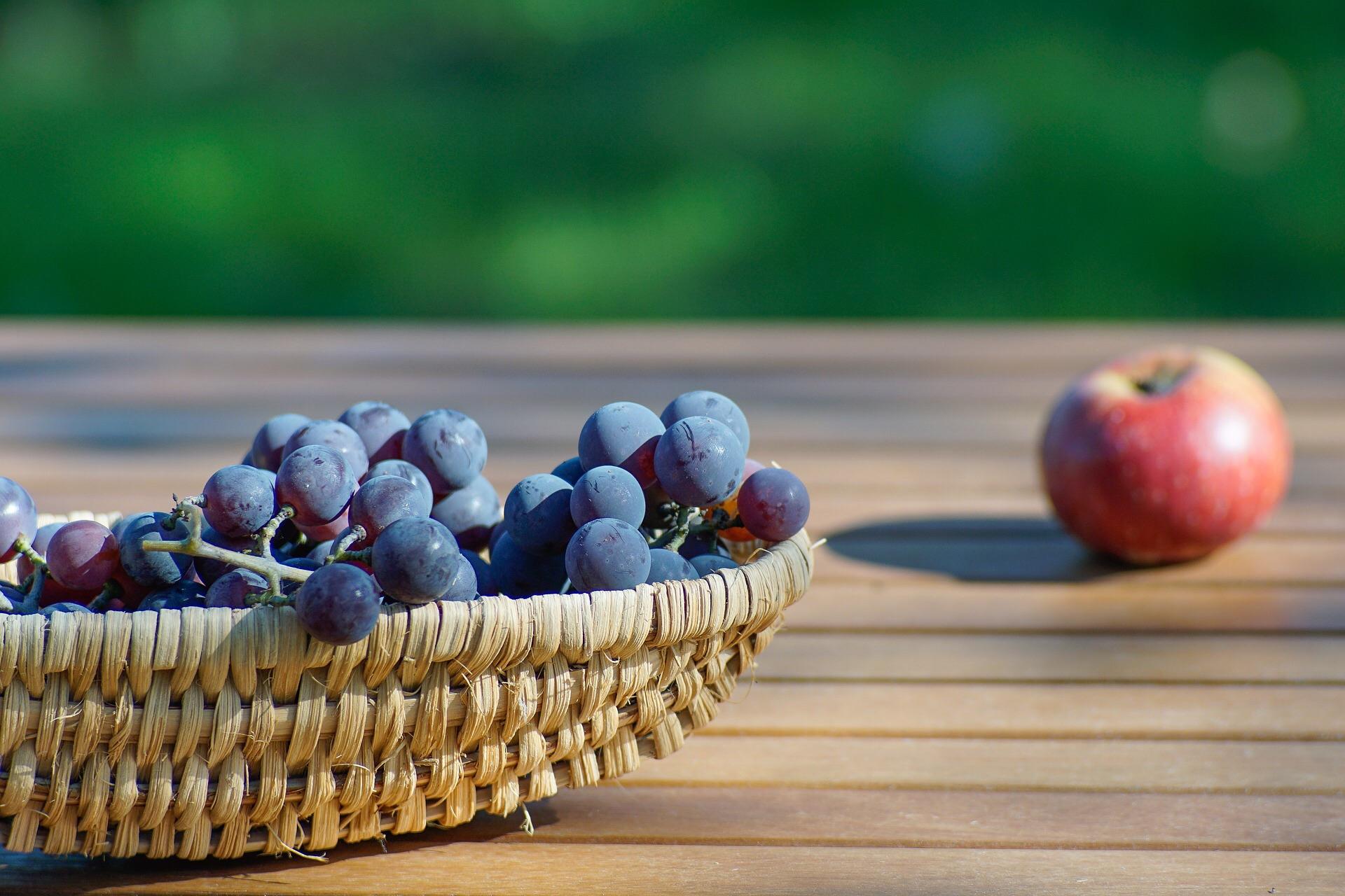 Winogrona i owoce w diecie
