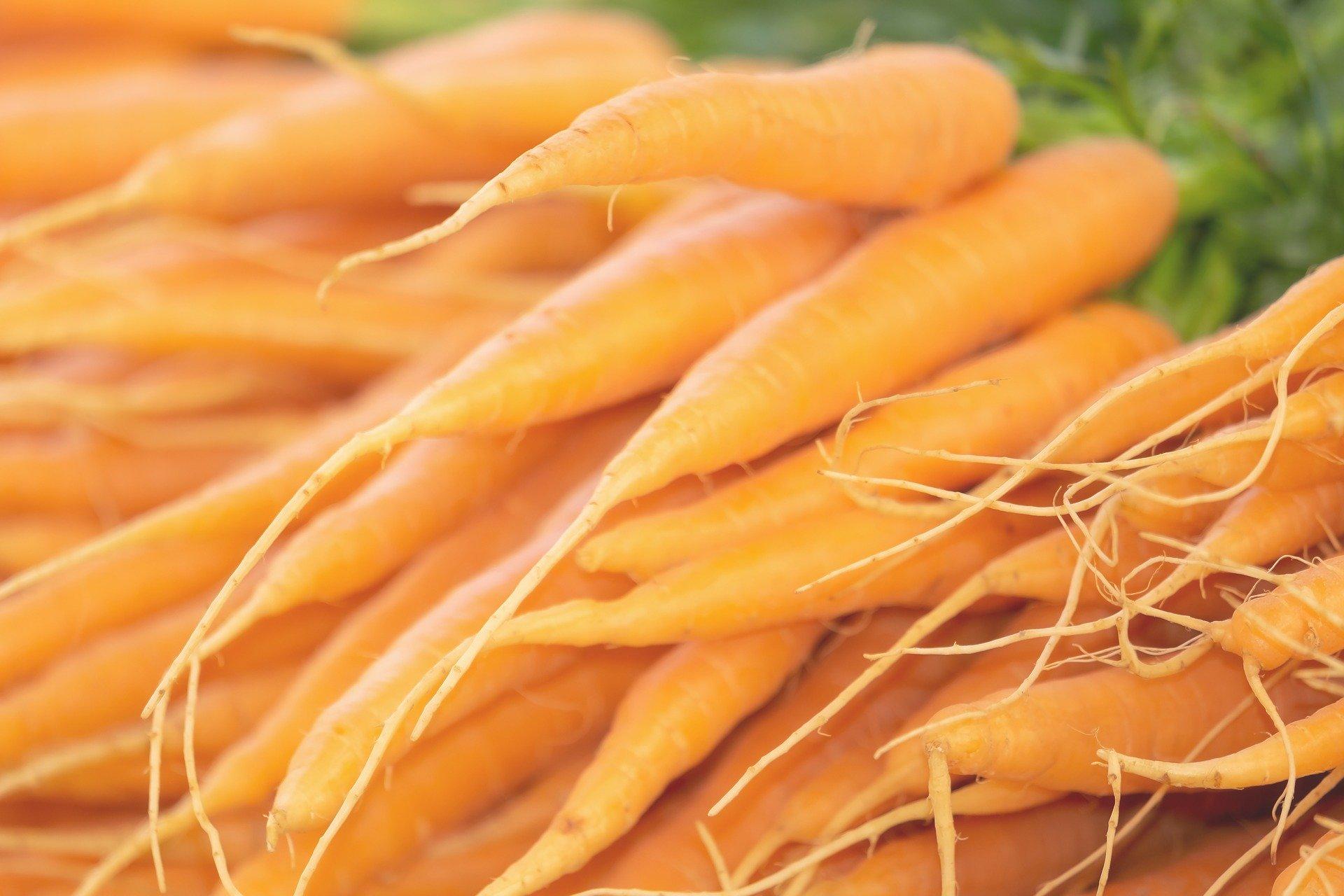 dania z marchewki